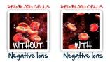 Quantum Pendant Blood Cells